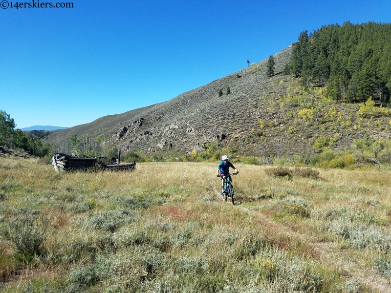 alder creek trail gunnison