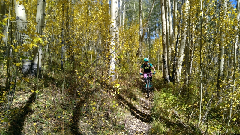 fossil ridge singletrack