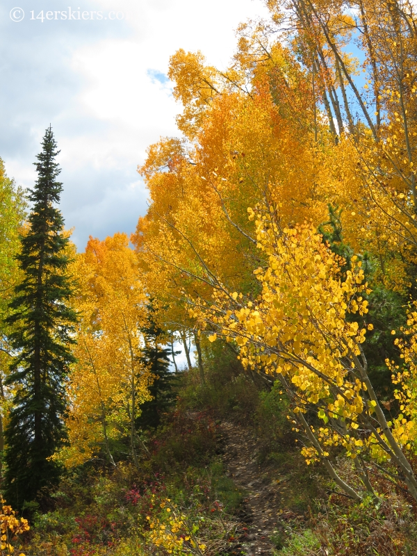 fall colors on Long Lake hike