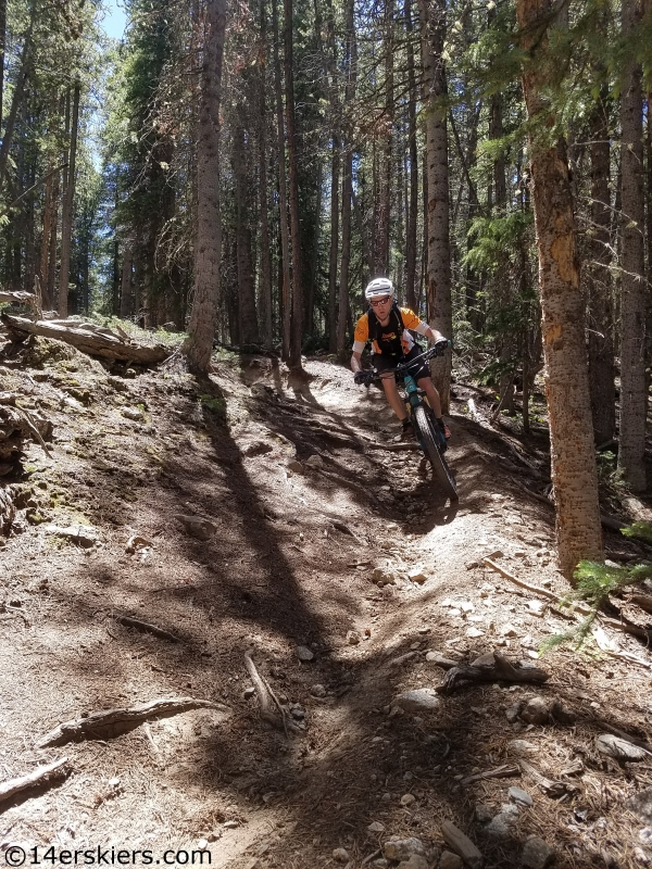 timberline from cottonwood to texas creek mtb