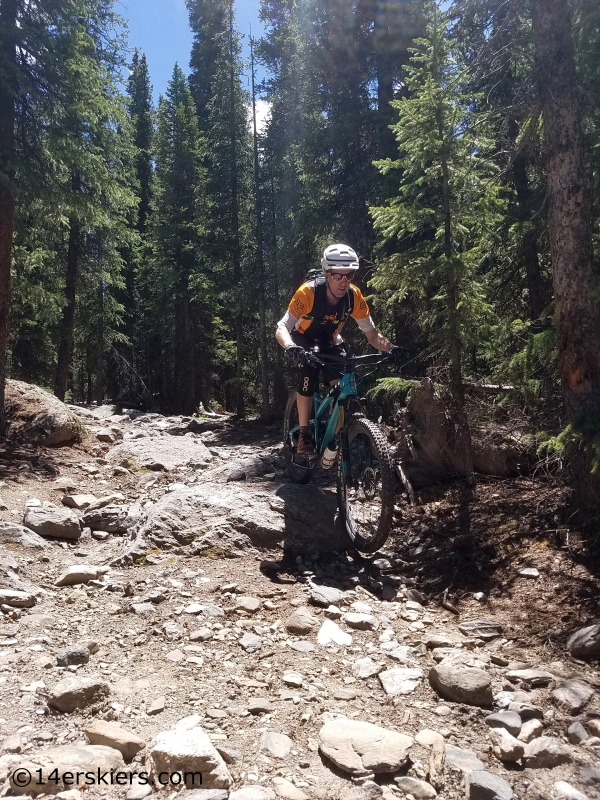 mountain biking timberline