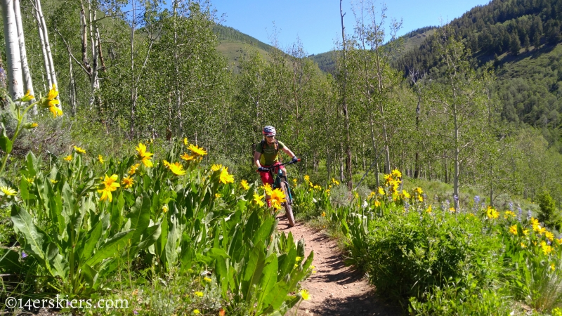 June mountain biking in Crested Butte