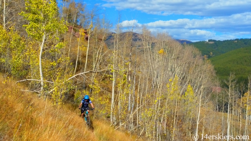 Frank Konsella mountain biking Waterfall Cutoff near Crested Butte.