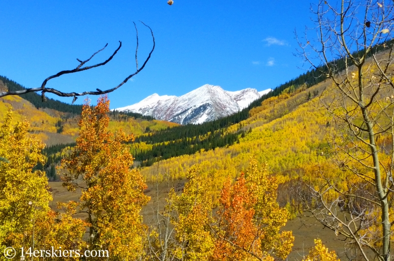 fall colors on Avery Peak in Crested Butte.