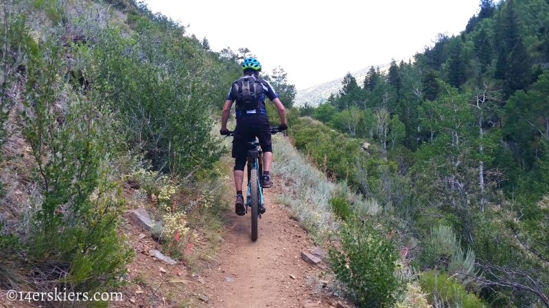 Frank Konsella mountain biking Greens Creek Trail near Monarch Pass.