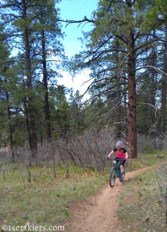 Mountain Biking 101 - Boggy Draw near Dolores, CO