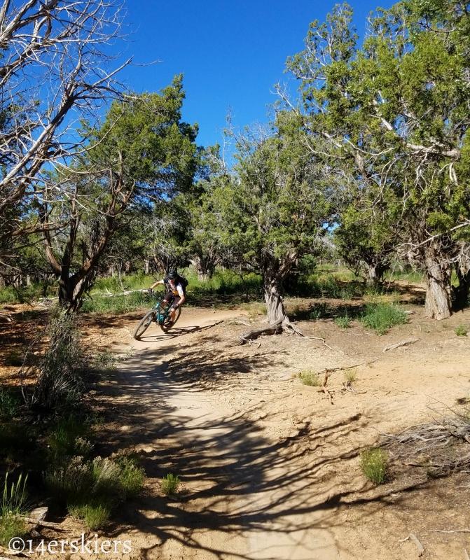 Mountain Biking 101:  Phil's World near Cortez, CO.