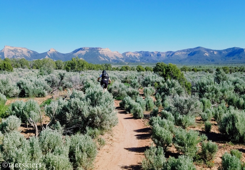 Mountain Biking 101:  Phil's World near Cortez, CO.