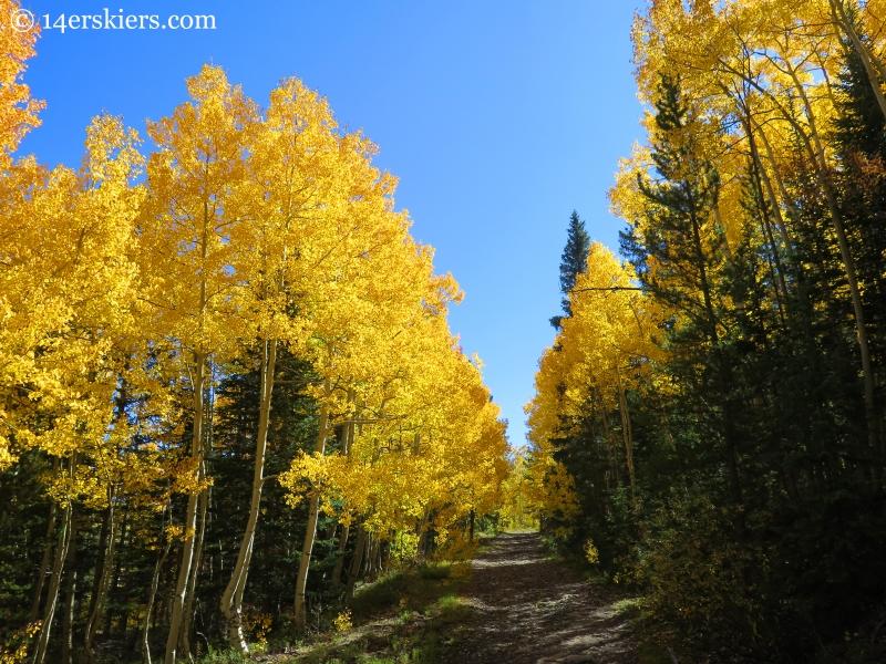 Gunsight Pass Road near Crested Butte.