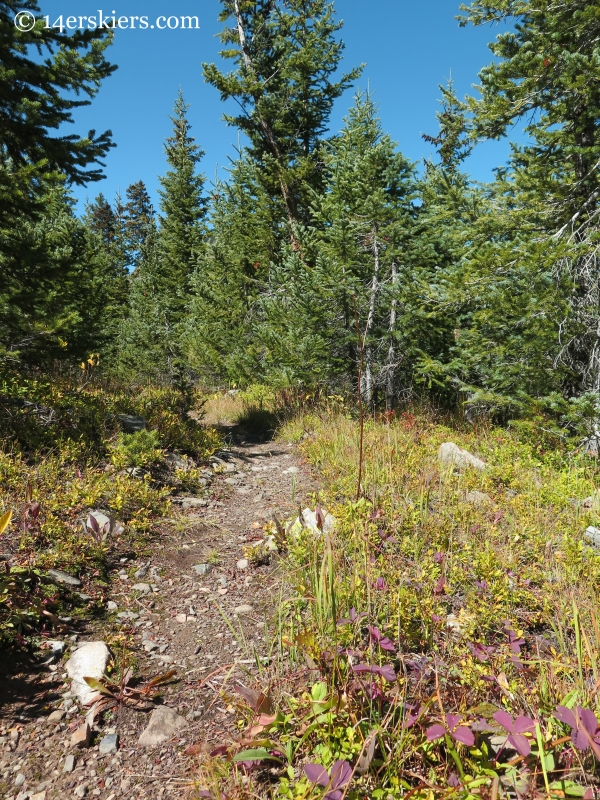 Peeler Lakes trail near Crested Butte