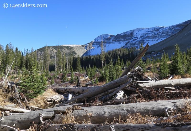 Avalanche debris near Peeler Lakes near Crested Butte