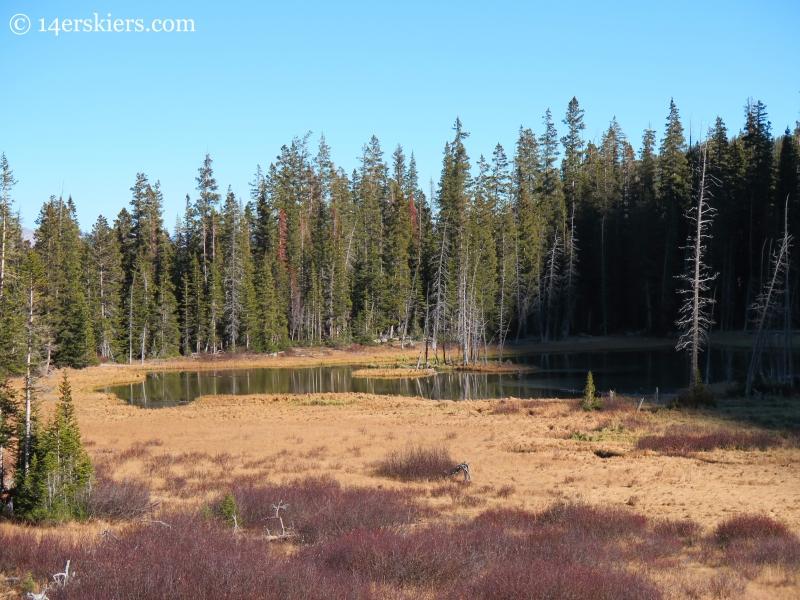 Lower Peeler Lake near Crested Butte