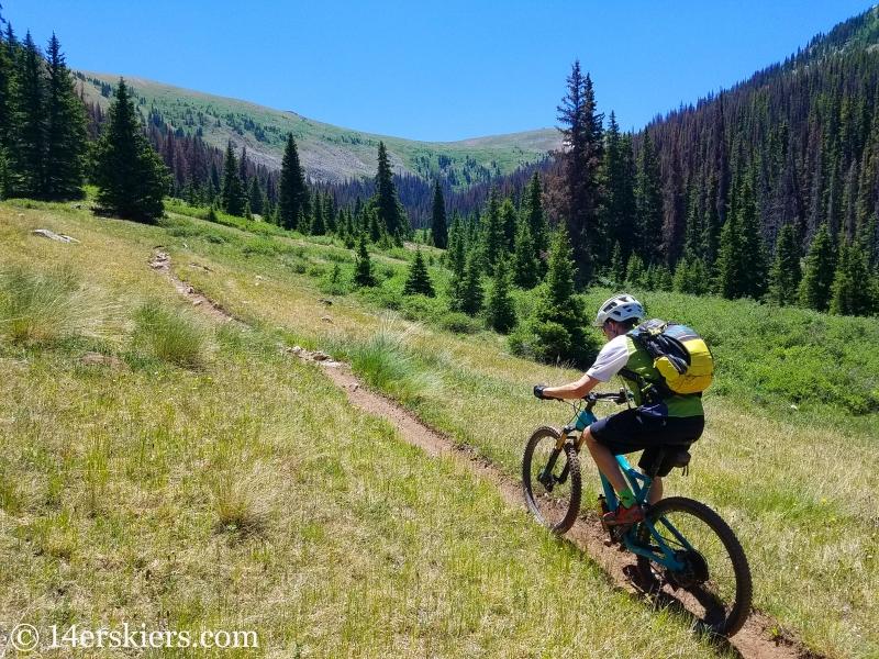 Mountain biking South Quartz trail near Pitkin, CO