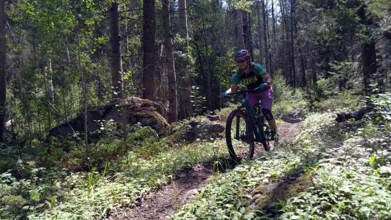 Barrett Creek Trail mountain biking gunnison