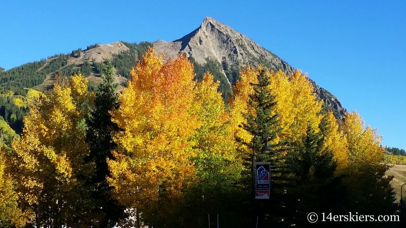 Fall colors on Mount Crested Butte.