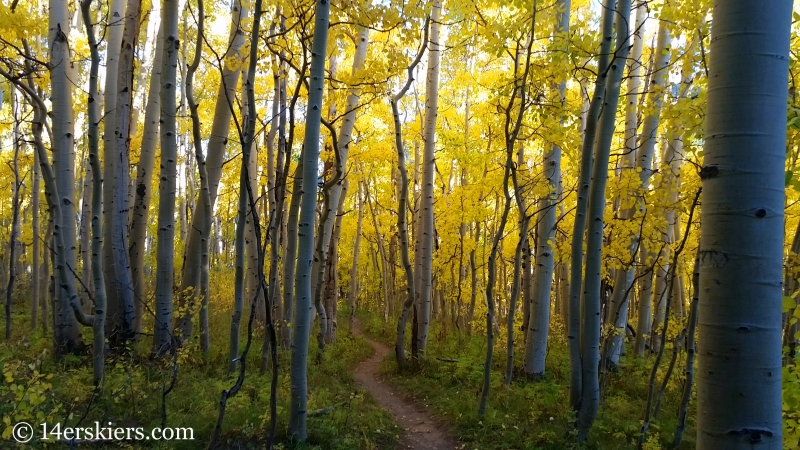 Fall colors at Crested Butte Mountain Resort