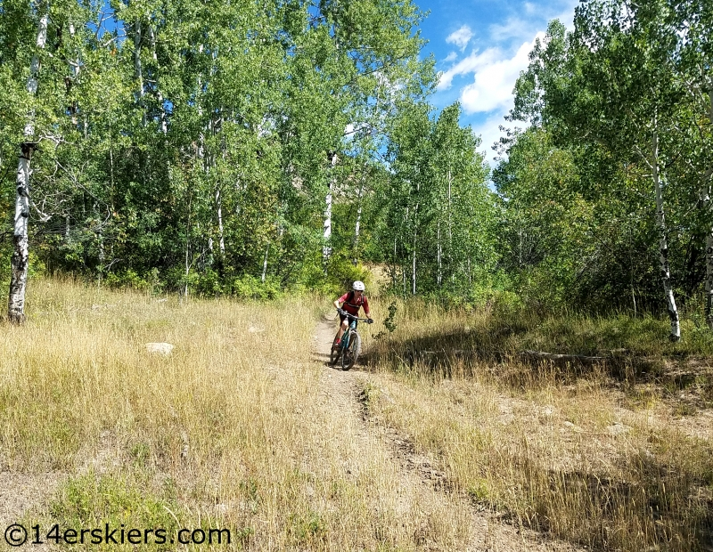 mountain biking west elks