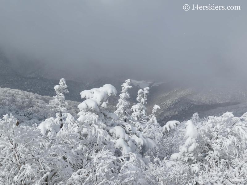Views while skiing at YongPyong ski resort in South Korea.