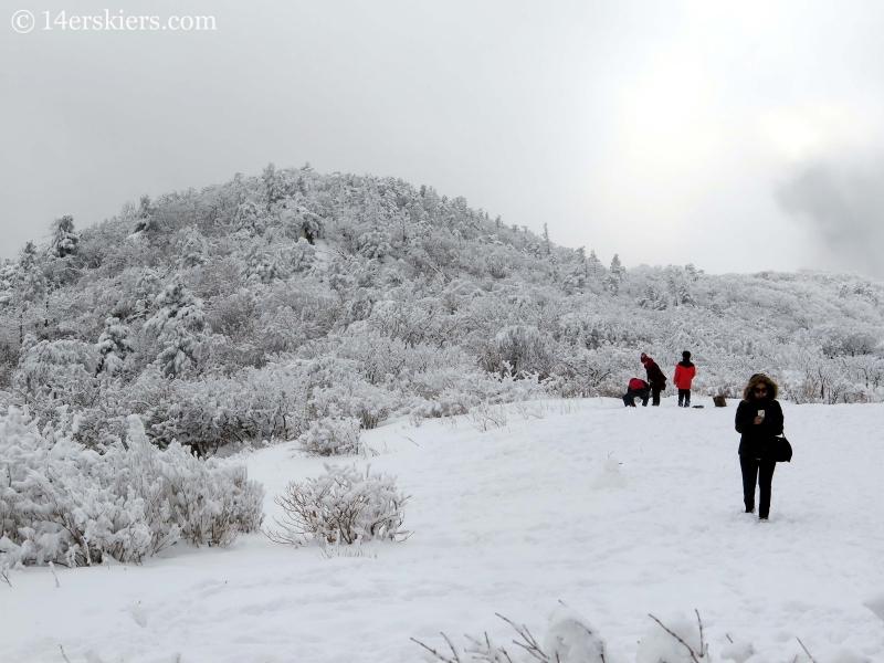 Hike on ridge at top of gondola at YongPyong, South Korea.