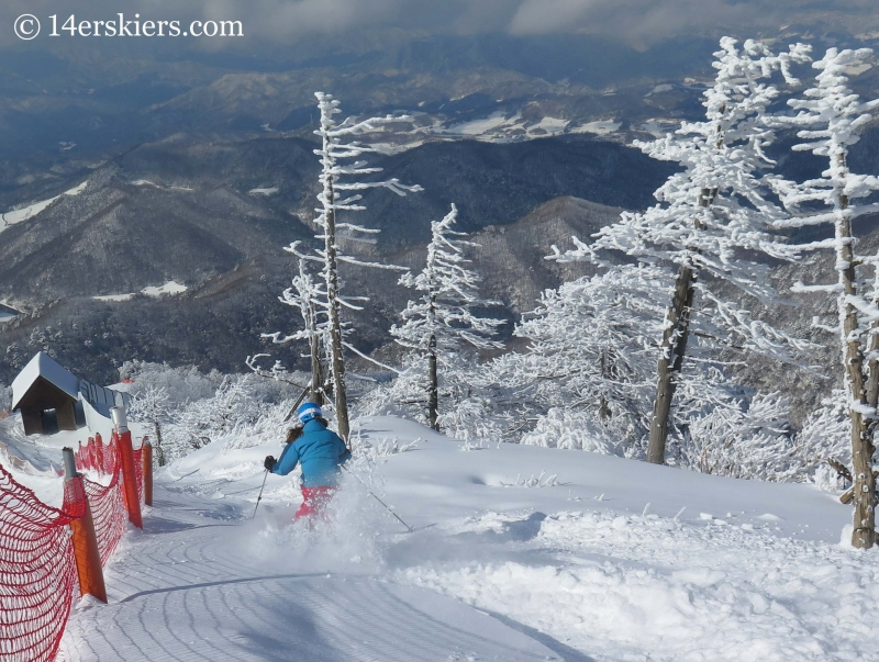 Brittany Konsella skiing in YongPyong, South Korea.
