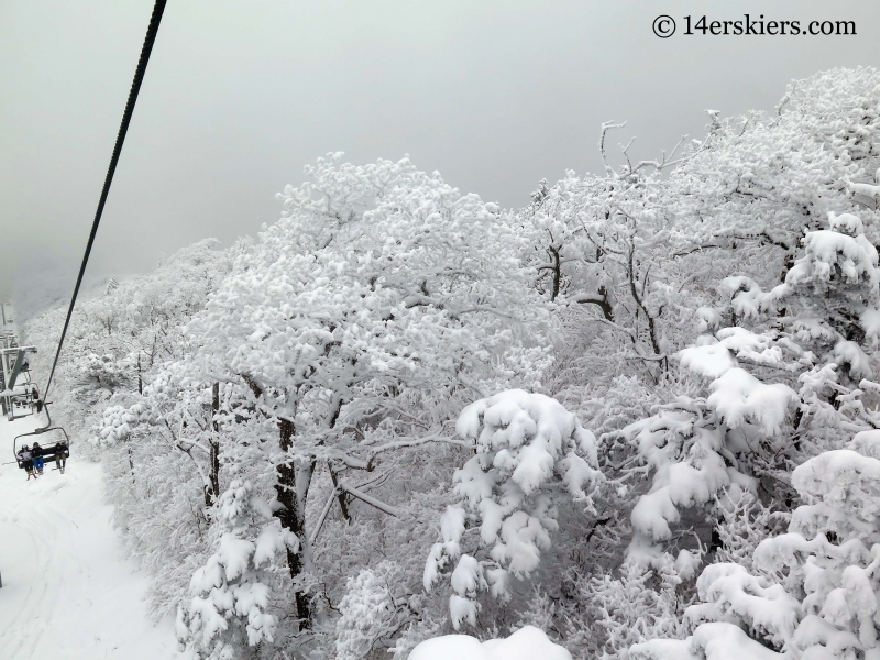 Looking down the Rainbow Chair at YongPyong ski area in South Korea.