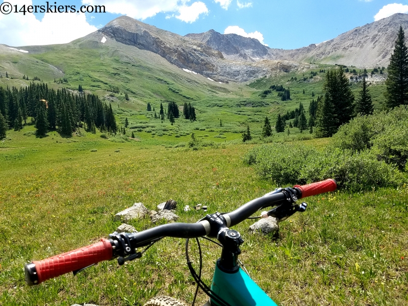 italian mountain crested butte mtb
