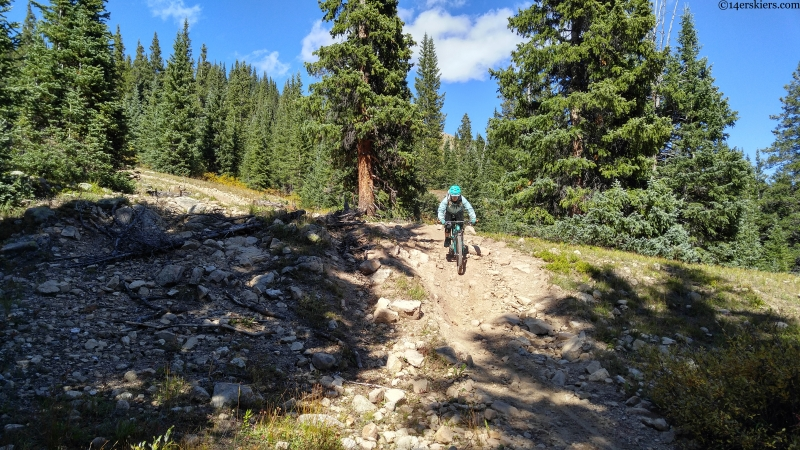 mountain biking the star trail near crested butte