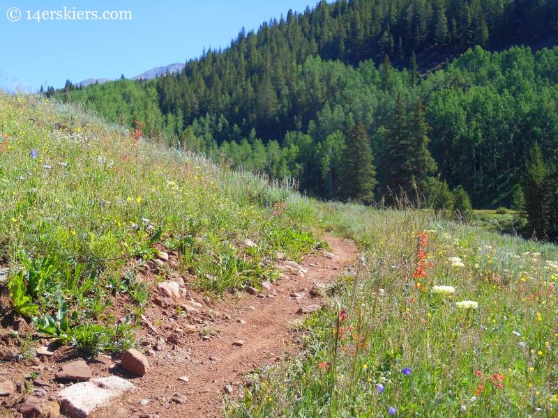 Upper Cement Creek trail near Crested Butte