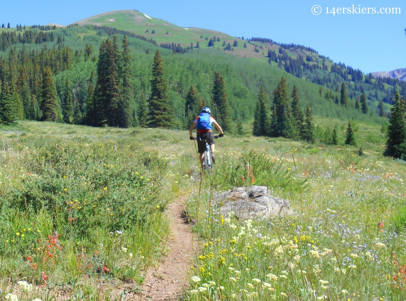 Mountain biking Upper Cement Creek trail near Crested Butte