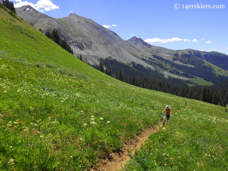 Crystal Peak trail near Crested Butte