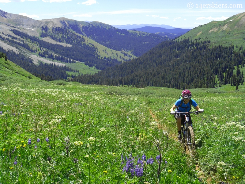 Mountain Biking Crystal Peak trail near Crested Butte