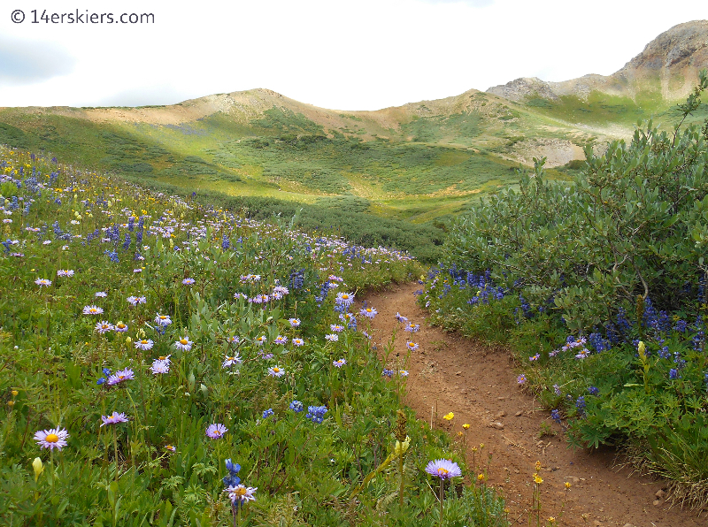 Crested Butte Mountain bike trails