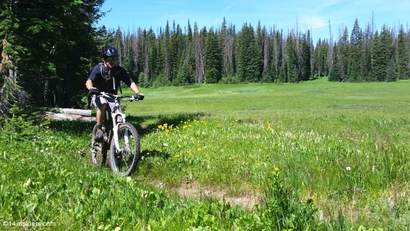 Larry Fontain Mountain biking near Steamboat Springs.