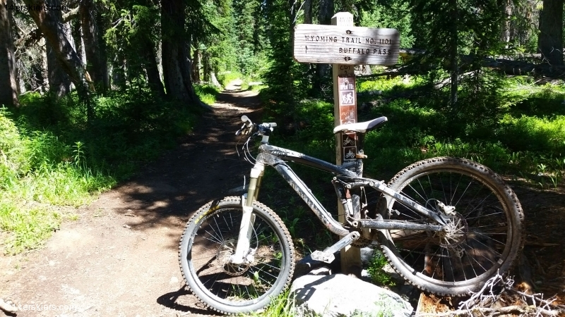 Mountain biking near Steamboat Springs