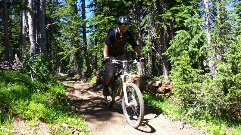 Larry Fontaine mountain biking near Steamboat Springs