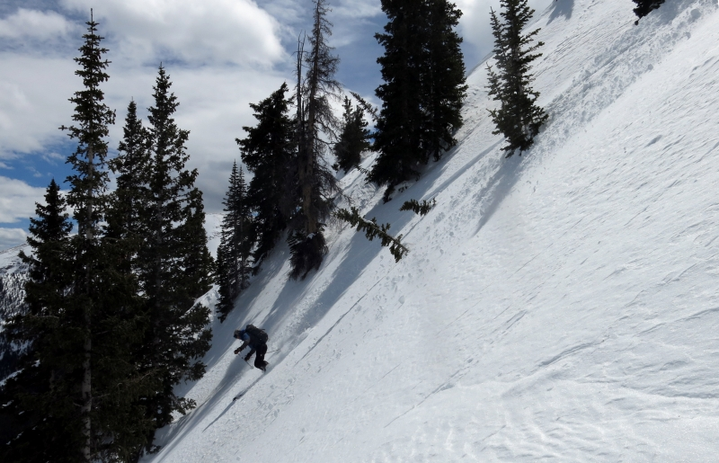 colorado backcountry skiing website