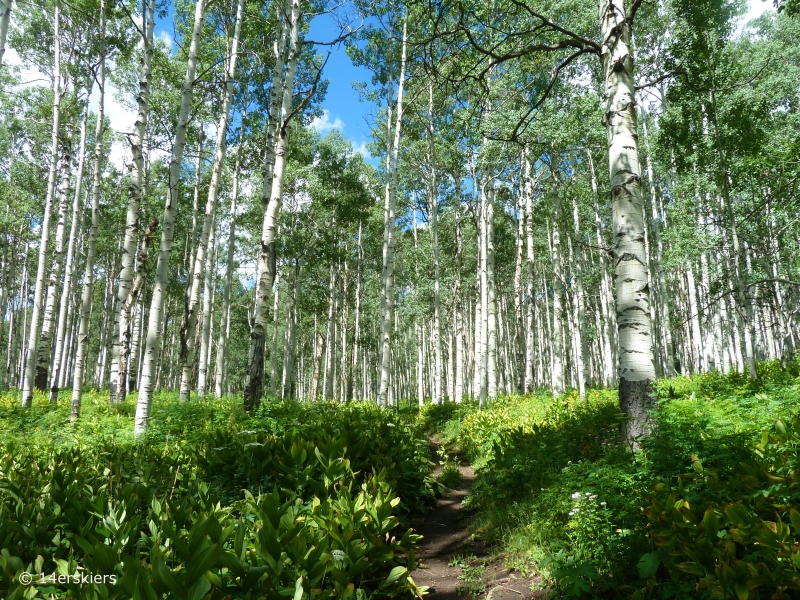 Swampy Pass hike near Crested Butte, CO.
