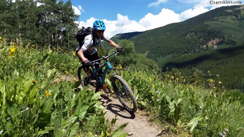 teocalli ridge bike