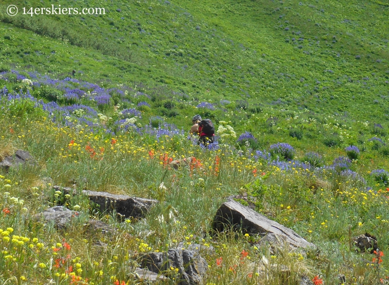 Grete in wildflowers on Teocalli Ridge