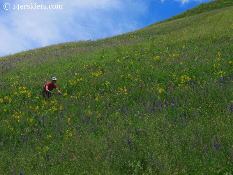 Brittany Konsella mountain biking with wildflowers