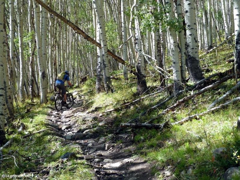 Mountain biking Texas Ridge in Taylor Park, CO