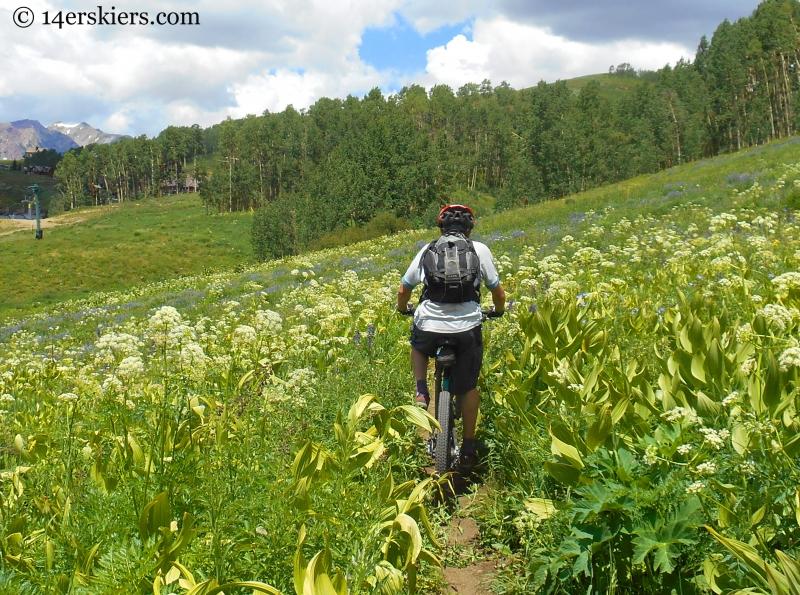 Mountain biking Crested Butte