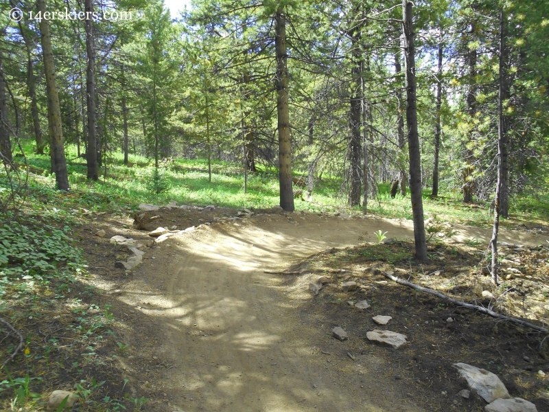 Primer trail at Crested Butte Mountain Resort