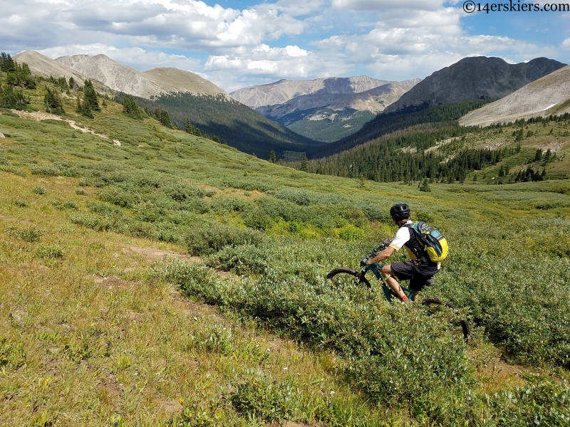 sawatch range alpine mountain biking