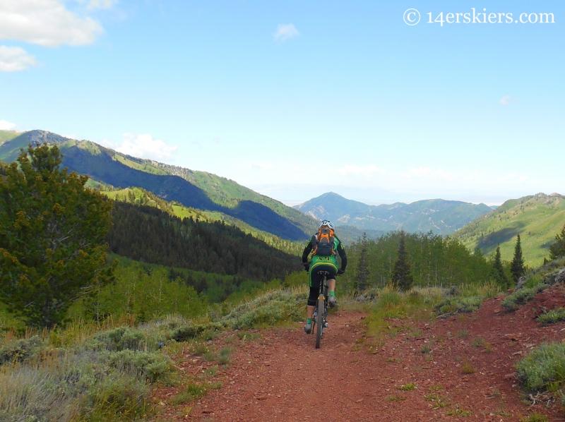 Wasatch Crest Trail ride