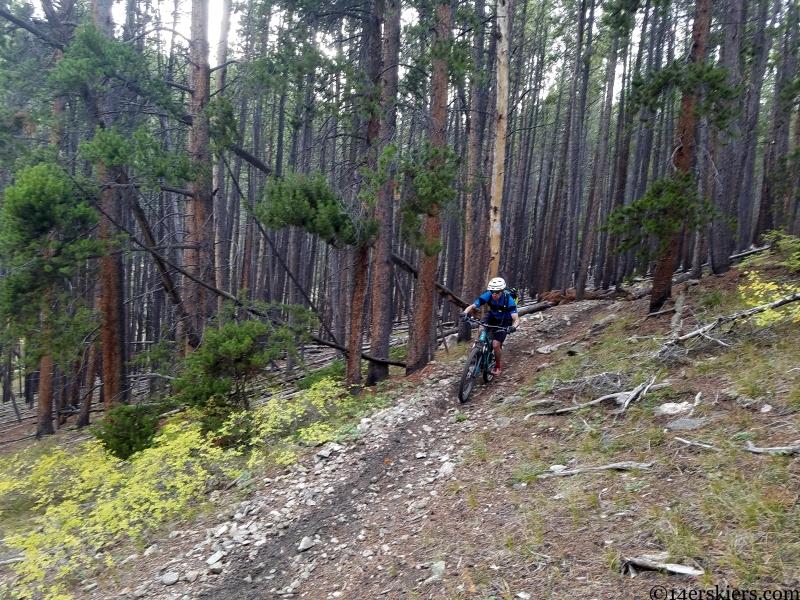 quakey mountain trail in the fall