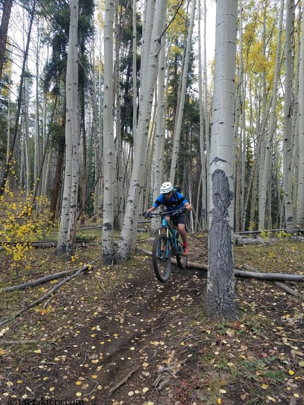 quakey trail mountain biking