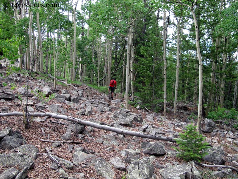 trail 409 crested butte colorado mountain biking