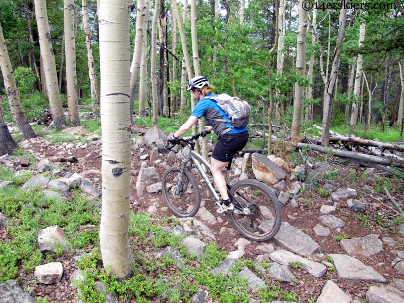 409 mountain bike crested butte