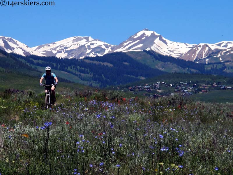 crested butte mountain biking paradise divide